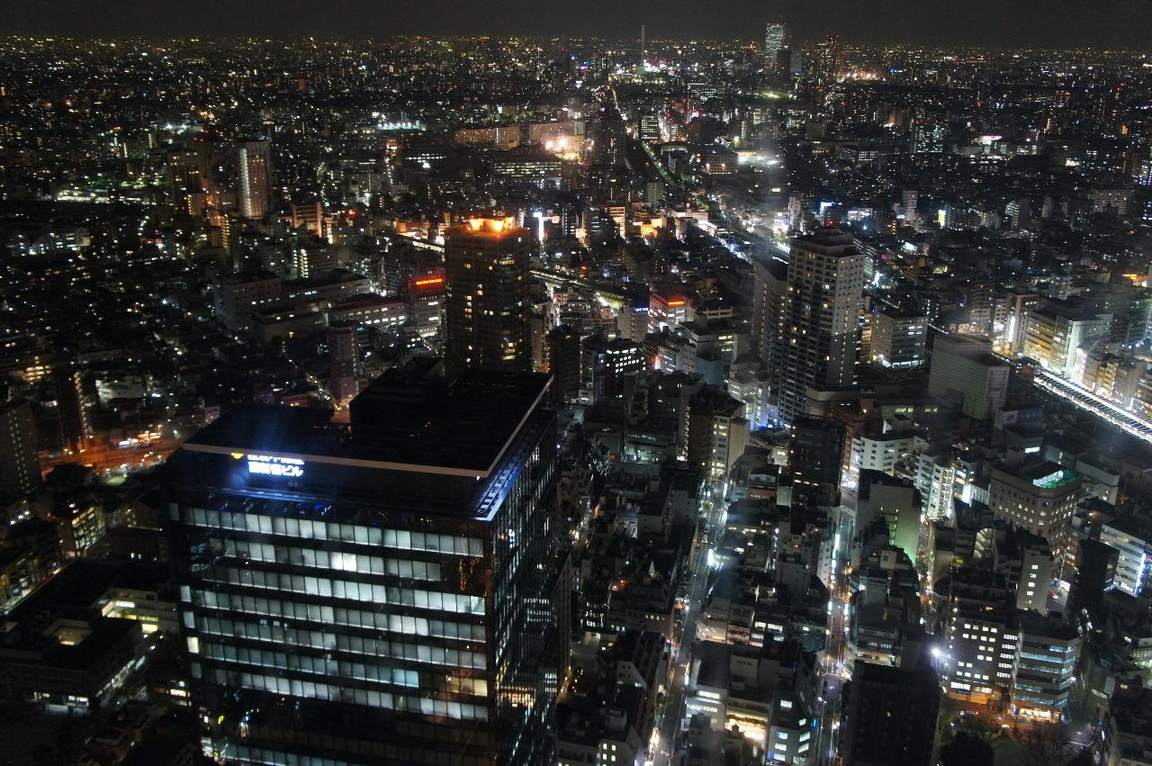 ハイステータスパーティー 新宿 オーキッドクラブ スカイラウンジ48F