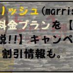 マリッシュ(marrish)料金【最新2021版全解説】割引キャンペーン/クーポン 女性は無料?